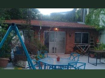 Ofrezco gran habitación individual y amplio jardín