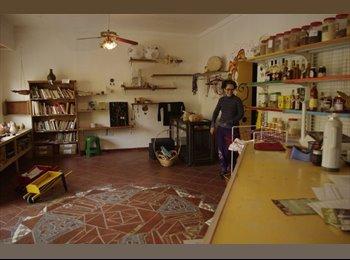 CompartoDepto AR - ALquilo local para loft monoambiente - Rosario Sur, Rosario - AR$ 3.000 por mes