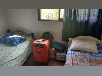 Comparto habitación en dpto