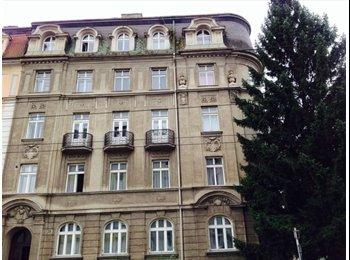 EasyWG AT - WG-Mitbewohner*in gesucht ab August 330€ Miete - Linz, Linz - 330 € pm