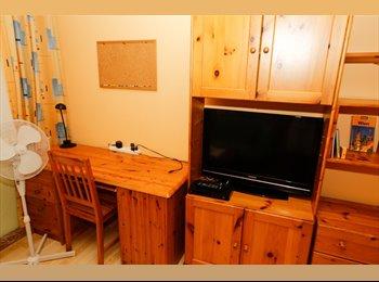 Schönes Zimmer in Top Wohnung - sehr zentral - für...