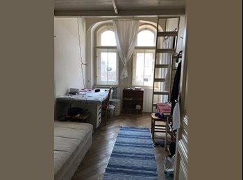 Hübsches WG-Zimmer, Wiener City