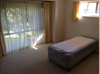 One room Available In Banora