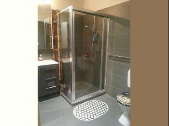 1 Room availiable for rent