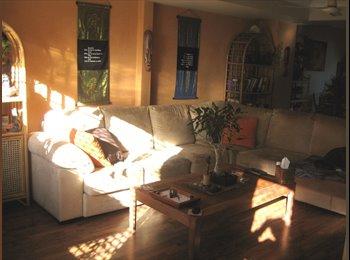 EasyRoommate AU - Kirra MASTER bedroom close to Beach & SCU - Coolangatta, Gold Coast - $200 pw