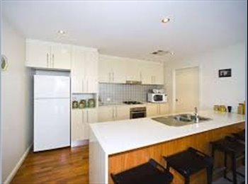 Newcastle CBD Apartment to Share