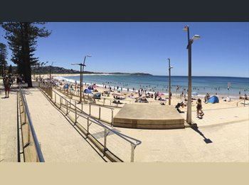 EasyRoommate AU - 2 min walk from the beach, close to city - Dee Why, Sydney - $250 pw
