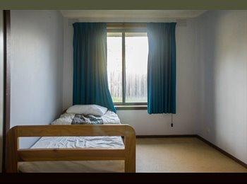 Room for Rent in Blackburn North