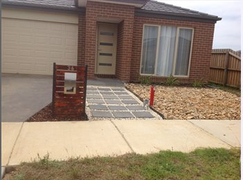 EasyRoommate AU - Rooms for rent Marshall - Marshall, Geelong - $120 pw