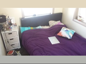 EasyRoommate AU - Small single room in Bondi - Bondi, Sydney - $220 pw