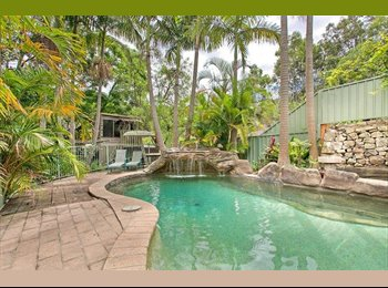 EasyRoommate AU - Large Double Room available- house with pool - Brookvale, Sydney - $290 pw