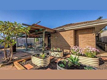 EasyRoommate AU - Room available in mirrabooka - Mirrabooka, Perth - $150 pw