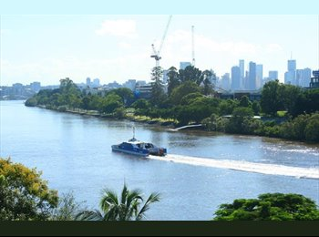 EasyRoommate AU -  PICTURESQUE RIVER SETTING, NEAR ALL AMENITIES - Toowong, Brisbane - $220 pw