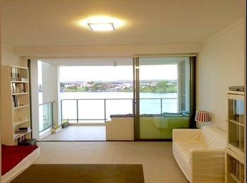 EasyRoommate AU - Luxury apartment walking distance to Bond Uni, Cafes, and Supermarkets.  - Varsity Lakes, Gold Coast - $230 pw