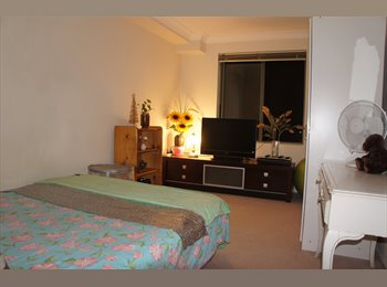 EasyRoommate AU - MIRANDA :large  furnished room for rent - Miranda, Sydney - $220 pw