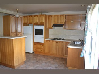 Large flat in Mowbray - very close to the university and...