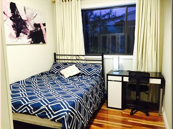 EasyRoommate AU - Beautiful Spacious & Sunny Room with all bills included!, Sydney - $240 pw