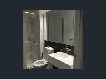Brand New Flat, Nice Roomshare