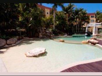 EasyRoommate AU - Room for rent at Magic mountain, Miami - $200 pw
