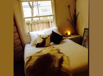 EasyRoommate AU - great place to be home, Prahran - $230 pw