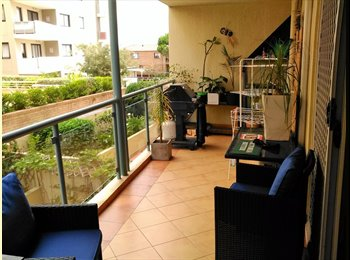 Large furnished room with ensuite in Maroubra
