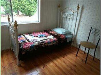 Room In Heidelberg