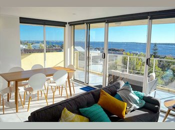 EasyRoommate AU - Apartment room for rent , Perth - $250 pw