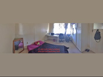 2 ROOMS AVAILABLE JUST FOR A MONTH