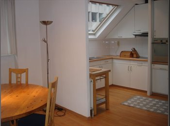 Appartager BE - LUMINOUS DUPLEX  WITH PRIVATE BATHROOM NEAR CE, Bruxelles - 750 € / Mois