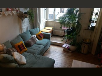 Appartager BE - gezocht/cherche/looking for: nice roommates!, Bruxelles - 450 € / Mois