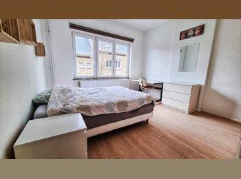 Appartager BE - Grande chambre a Salzinnes proximité  St Elisabeth - Namur, Namur-Namen - 360 € / Mois