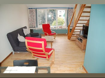 apartment 2nd and 3rd floor, 1 bedroom single, 1 double...