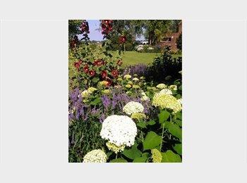 Appartager BE - Grote kamer / Grande chambre à la campagne, Hoegaarden - 550 € / Mois
