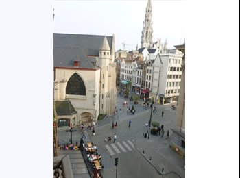 Appartager BE - A room in the heart of the city - le Pentagone (centre ville), Bruxelles-Brussel - 400 € / Mois