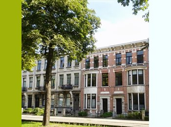 Appartager BE - charmant gemeenschapshuis/collocation/cohousing, Anvers - 375 € / Mois