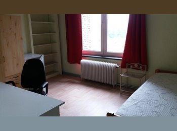 Appartager BE - CHAMBRE d'étudiant La Louvière, La Louvière - 350 € / Mois