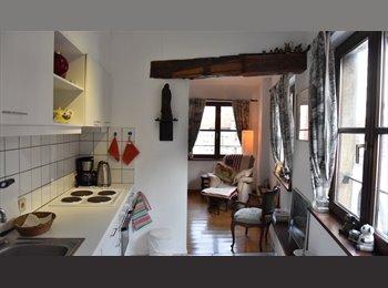 Appartager BE - STUDIO privatif A LOUER en plein centre, Bruxelles-Brussel - 750 € / Mois