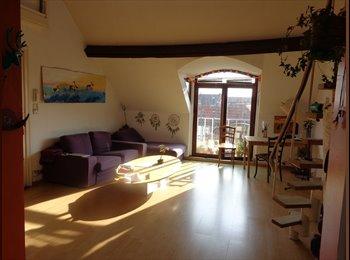Appartager BE - chambre à louer, Saint-Gilles - 450 € / Mois