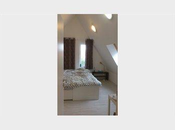 Appartager BE - Chambre/studio avec SDB privée étudiant, stagiaire,jeune diplômé       , Tournai - 365 € / Mois