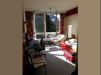 Appartager BE - Chambre dans appartement Ixelles - Ixelles-Elsene, Bruxelles-Brussel - 375 € / Mois