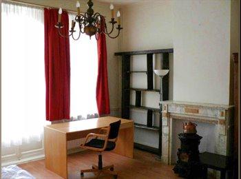 Spacieux et lumineux duplex meublé 3 chambres Basilique