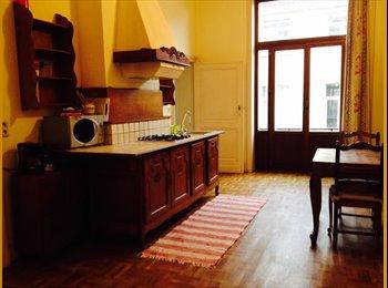 Grand appartement lumineux entièrement meublé