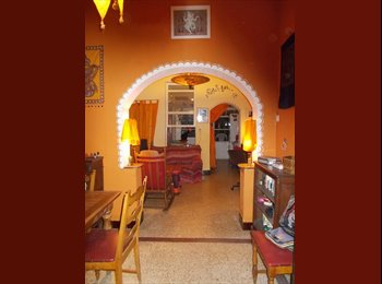 Appartager BE - Colocation avec deux chats. Sharehouse with 2 cats. - Mons-Bergen, Mons-Bergen - 350 € / Mois
