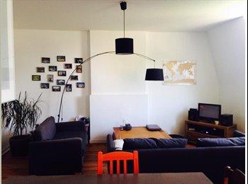 Appartager BE - appartement meublé en sous location à partir du 1/11 (ou plus tot, à convenir) - Liège, Liège-Luik - 600 € / Mois