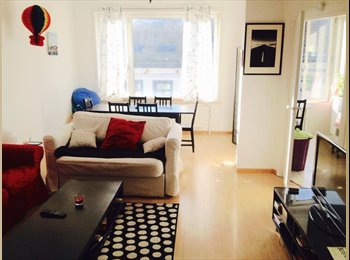 Appartager BE - ROOM TO RENT CHATELAIN / BAILLI 600€ + charges - Ixelles-Elsene, Bruxelles-Brussel - 600 € / Mois