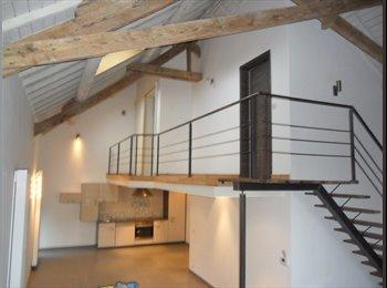 Appartager BE - LOFT 100 m2 2 CHAMBRES AVEC COLOC cuisine partagee A 1357 HELECINE - Louvain-la-Neuve, Louvain-la-Neuve - 450 € / Mois