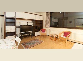 Appartager BE - Spacieux Studio avec les utilitaires inclus à Etterbeek - le Pentagone (centre ville), Bruxelles-Brussel - 755 € / Mois