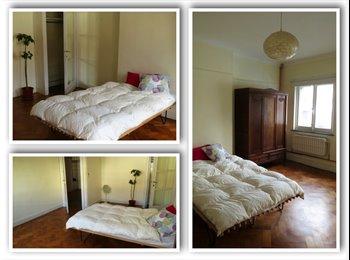 Appartager BE - 1 chambre dans un beau duplex/room in a lovely big apartment  - Ixelles-Elsene, Bruxelles-Brussel - 650 € / Mois
