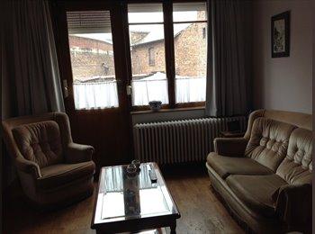 Appartager BE - maison familiale à partager entre 3 colocataires sympas - Namur, Namur-Namen - 310 € / Mois