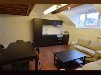 Appartager BE - Newly renovated furnished 4 bedrooms in the EU area., Ixelles-Elsene - 500 € / Mois